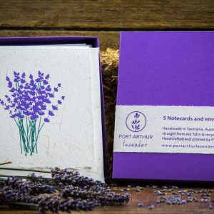 lavender-note-card-envelopes-72